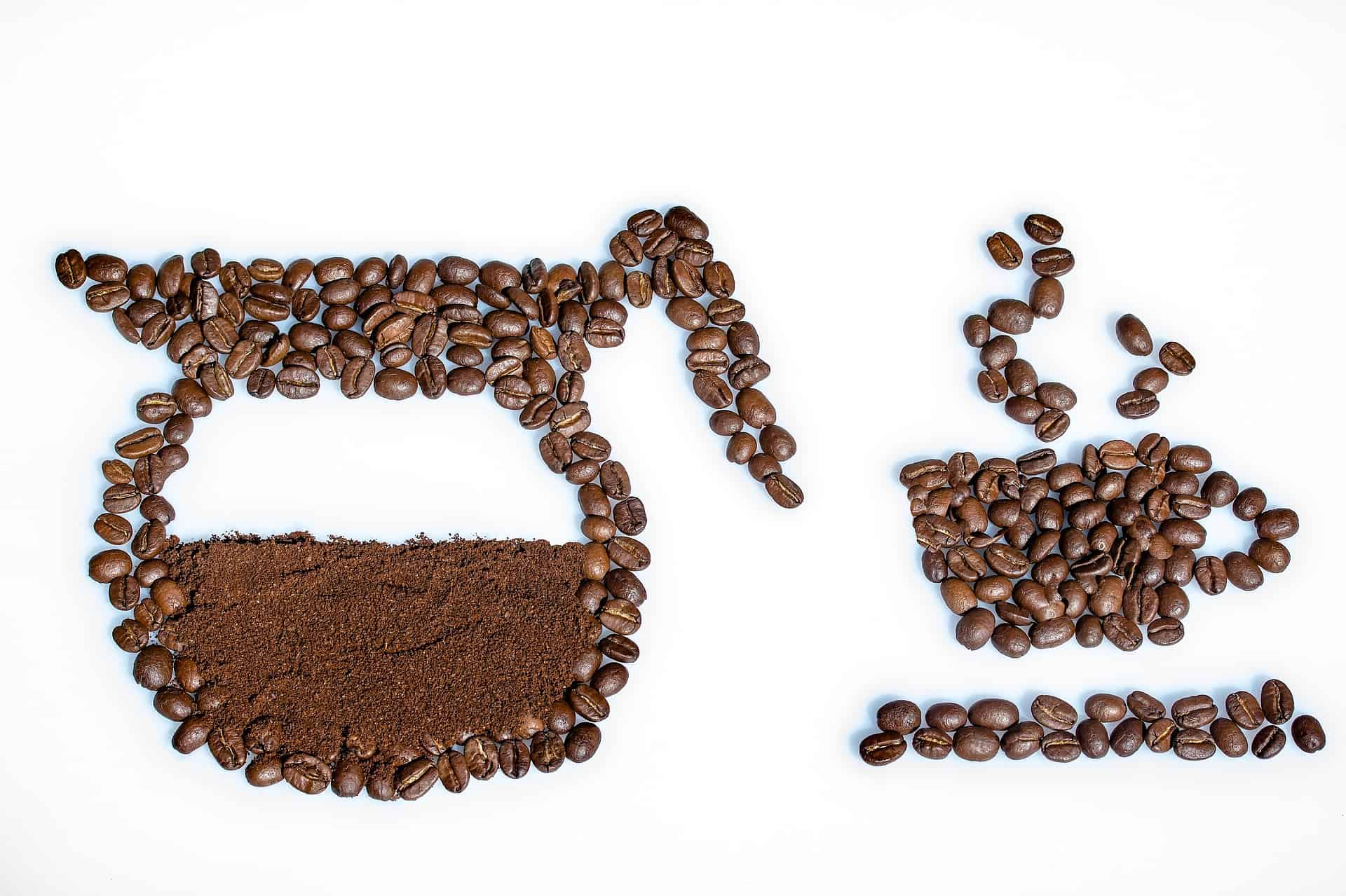 Coffee Bean: Understand Its Journey