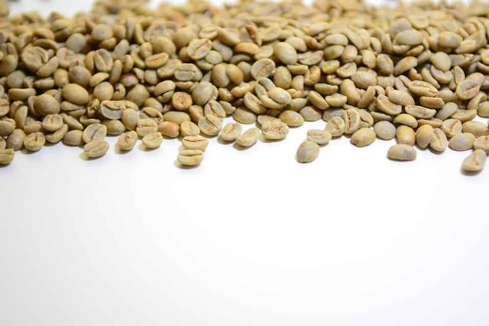 How Green Coffee Bean Extract Works
